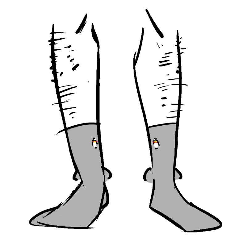 Grey socks with small penguins near the top.